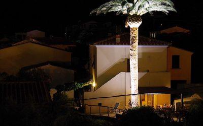 Giardino al Top: Idee con i Faretti LED da Esterno